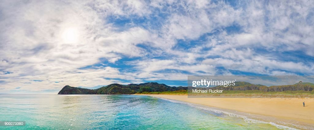 Gold Yellow sandy beach of Awaroa Bay, Abel Tasman National Park, Tasman Region, Southland, New Zealand : Stock Photo