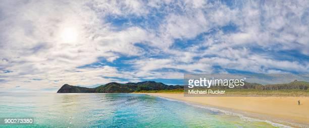 Gold Yellow sandy beach of Awaroa Bay, Abel Tasman National Park, Tasman Region, Southland, New Zealand