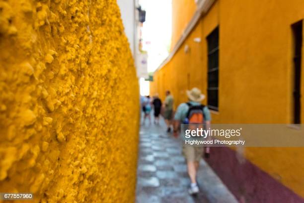 golden alley greets tourists - highlywood stock pictures, royalty-free photos & images