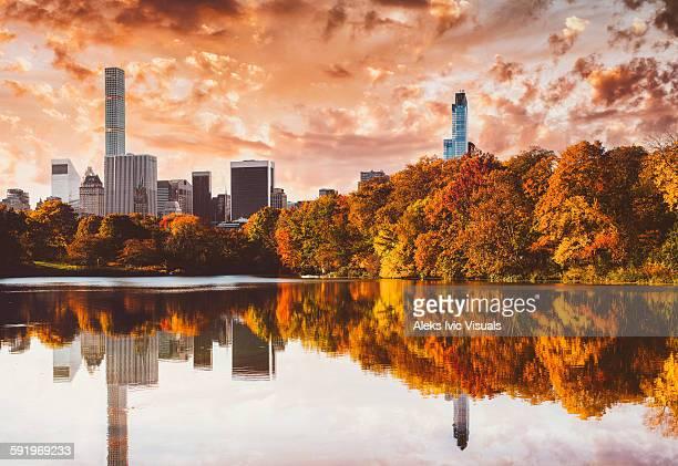 Golden Autumn Days