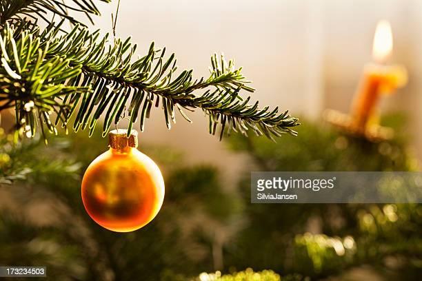 golden bauble dans tree