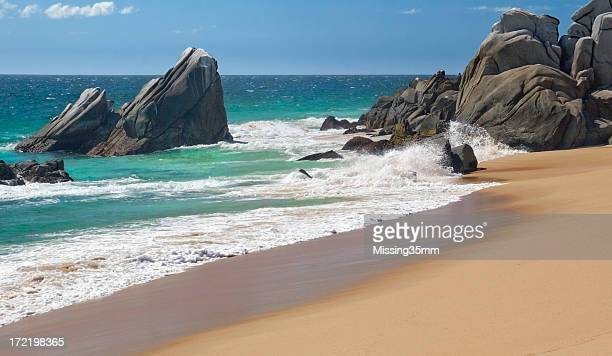 golden beach in mexico - cabo san lucas stock pictures, royalty-free photos & images