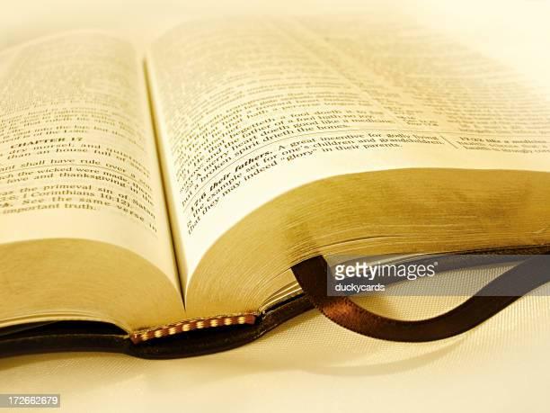 Golden Bible (KJV)