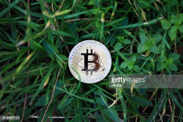 葉の黄金 bitcoin 外交公館 - 仮想通貨マイニング ストックフォトと画像
