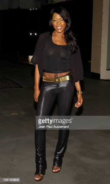 Golden Brooks during 2003 TCA UPN Summer Party at Renissance Hotel in Hollywood California United States