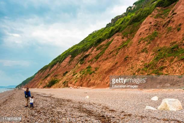 Golden brown cliffs and beach at Branscombe on the Jurassic coast in Devon, England, UK.