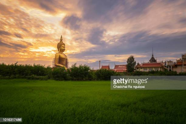 golden buddha is located at wat muang, angthong, thailand. - biggest stock pictures, royalty-free photos & images