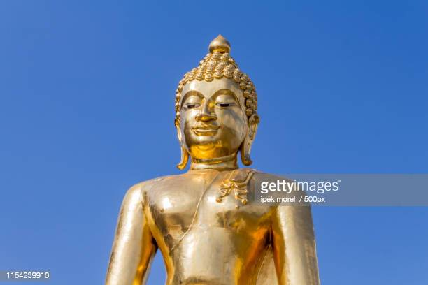 golden buddha statue in golden triangle - ipek morel stock pictures, royalty-free photos & images