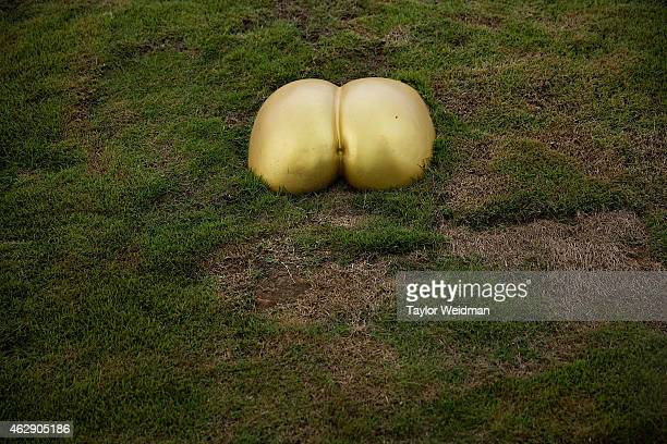 Golden buttocks jut from a hillside at the Erotic Garden and Teahouse on February 6, 2015 in Mae Rim, Thailand. The Erotic Garden and Teahouse opened...