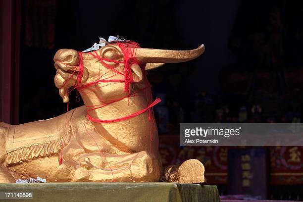 Golden Kuh. Buddhistische Tempel, Kunming, Younnan, China