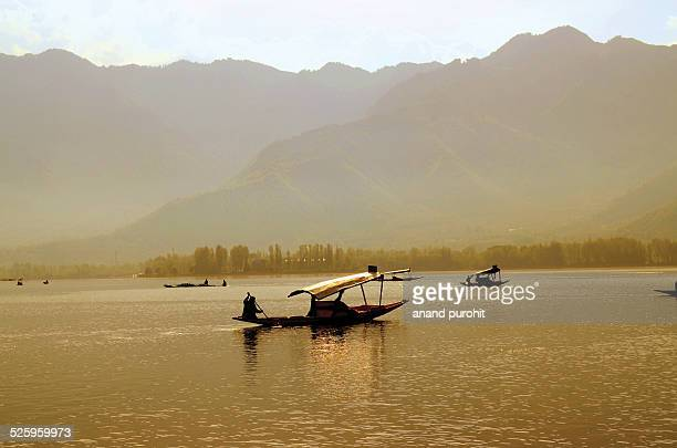 Golden Dal Lake, Srinagar, Jammu & Kashmir, India