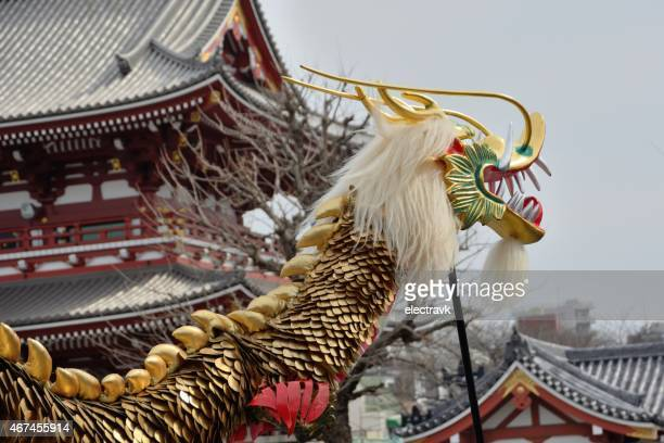 golden dragon dance - shamisen stock photos and pictures