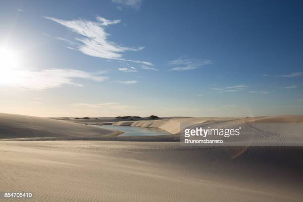 golden dunes at the sunset of the lençois maranhenses with a photo flare - maranhao state stock pictures, royalty-free photos & images