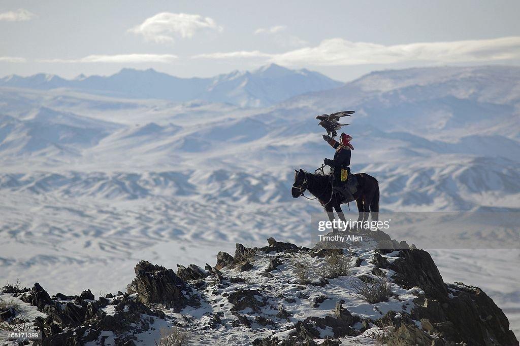 Golden eagle hunter on mountain peak : Stock Photo