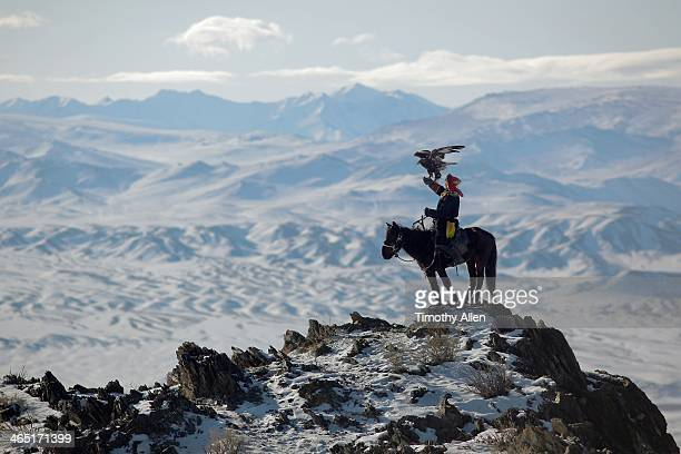 golden eagle hunter on mountain peak - independent mongolia stock pictures, royalty-free photos & images