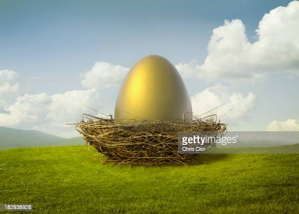 Golden egg in bird's nest