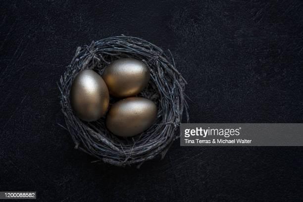 golden eggs in nest against dark background. flat lay. painted easter eggs. - osternest stock-fotos und bilder