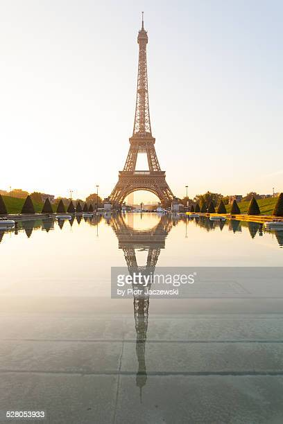 golden eiffel tower - esplanade du trocadero stock pictures, royalty-free photos & images