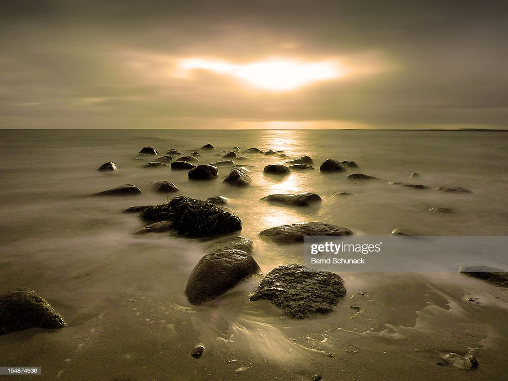 Golden Eye In The Sky : Stock-Foto