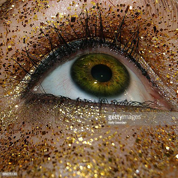golden eye - kelly bowden stock pictures, royalty-free photos & images