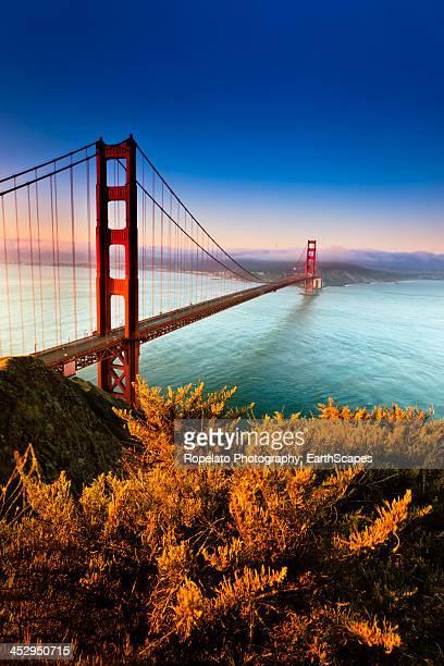 golden gate bridge - ponte sospeso foto e immagini stock