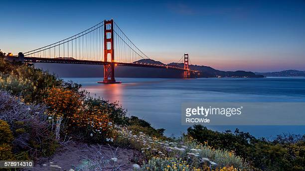 golden gate bridge, san francisco, usa - zona de la bahía de san francisco fotografías e imágenes de stock