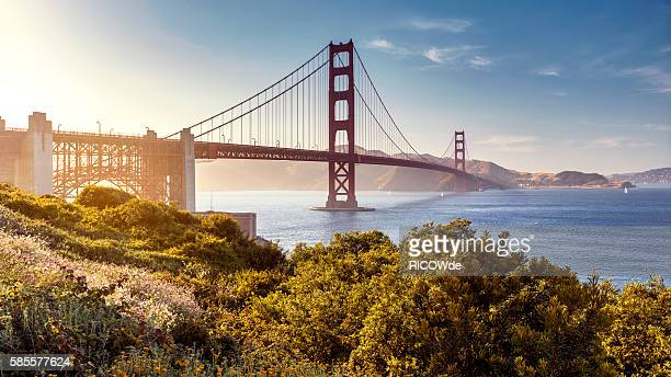 golden gate bridge, san francisco, usa - san francisco california stock photos and pictures