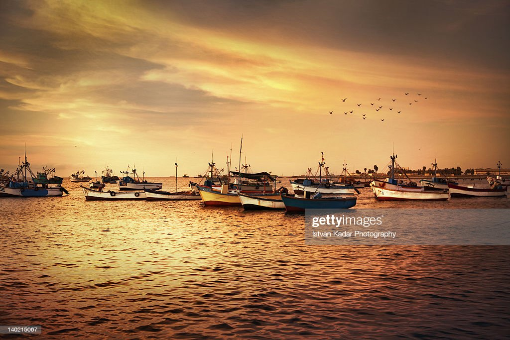 Golden Harbour Stock Photo - Getty Images
