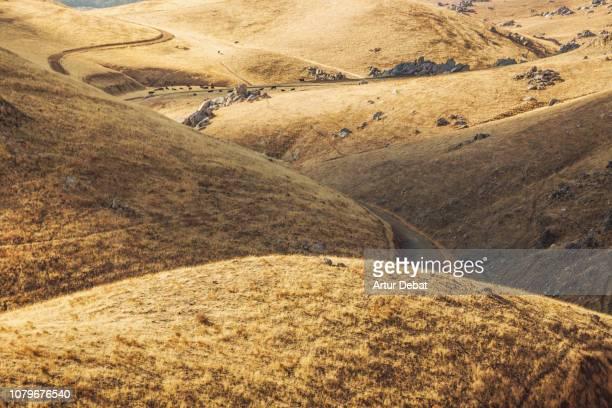 golden hills with footpath in the california countryside. - droog klimaat stockfoto's en -beelden