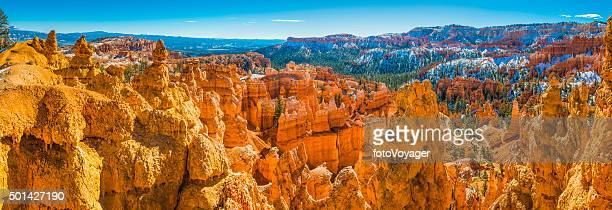 Golden hoodoos of Bryce Canyon National Park iconic wilderness Utah