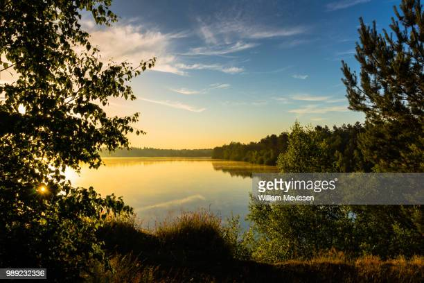 golden hour lake view - william mevissen foto e immagini stock