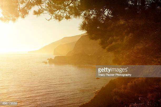 golden hour on the big sur coastline. - golden hour stock pictures, royalty-free photos & images