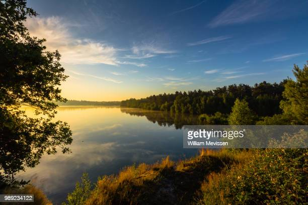 golden hour reflections - william mevissen foto e immagini stock