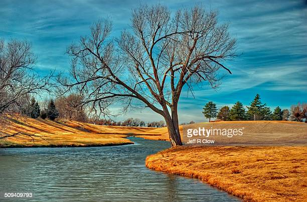 golden image - oklahoma stock pictures, royalty-free photos & images