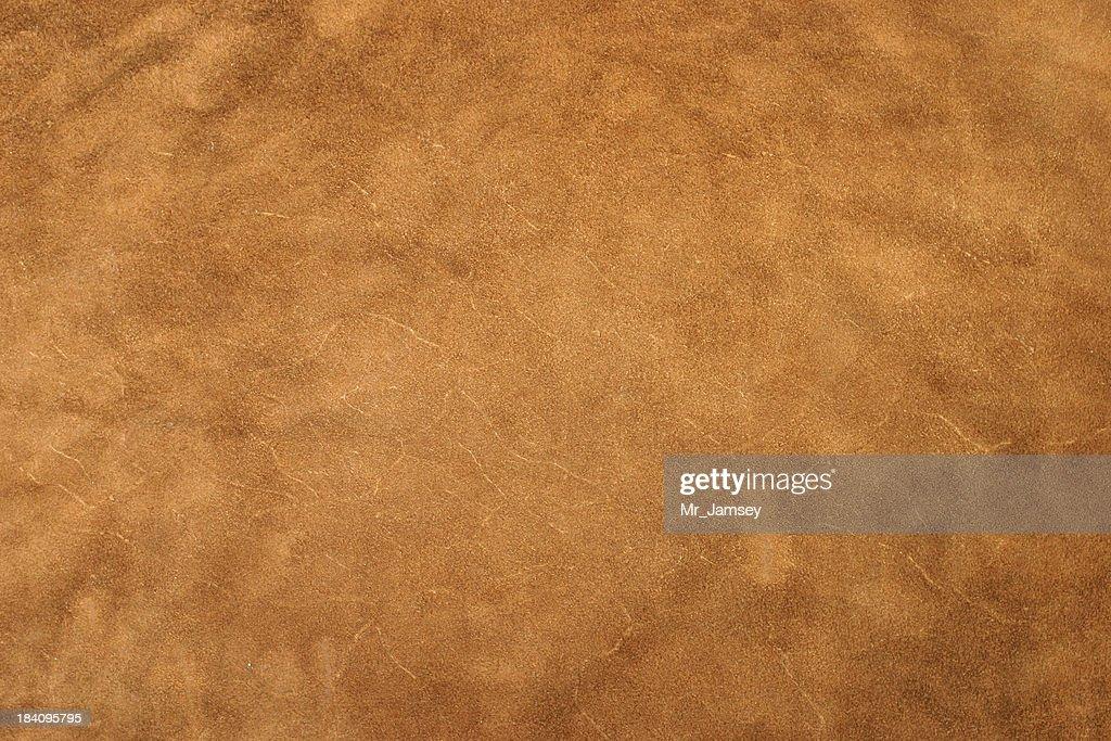 Golden Leather : Stock Photo