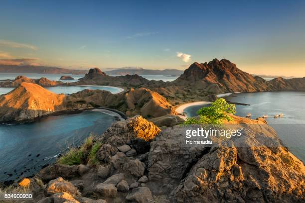 golden light at padar island - flores indonesia fotografías e imágenes de stock
