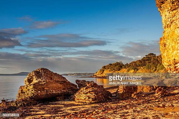 golden light on a calm coastal beach - porto lincoln - fotografias e filmes do acervo