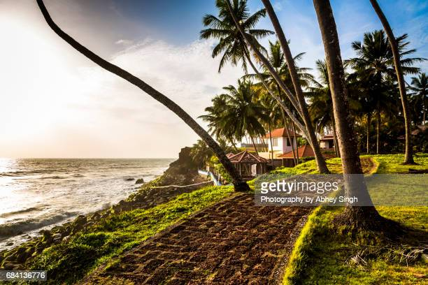 golden light on a path leading to a resort near varkala beach, kerala, india - thiruvananthapuram stock photos and pictures