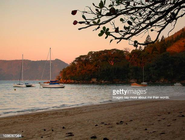 A golden light over a beach scene with sail boats, sand and tropical rain forest.