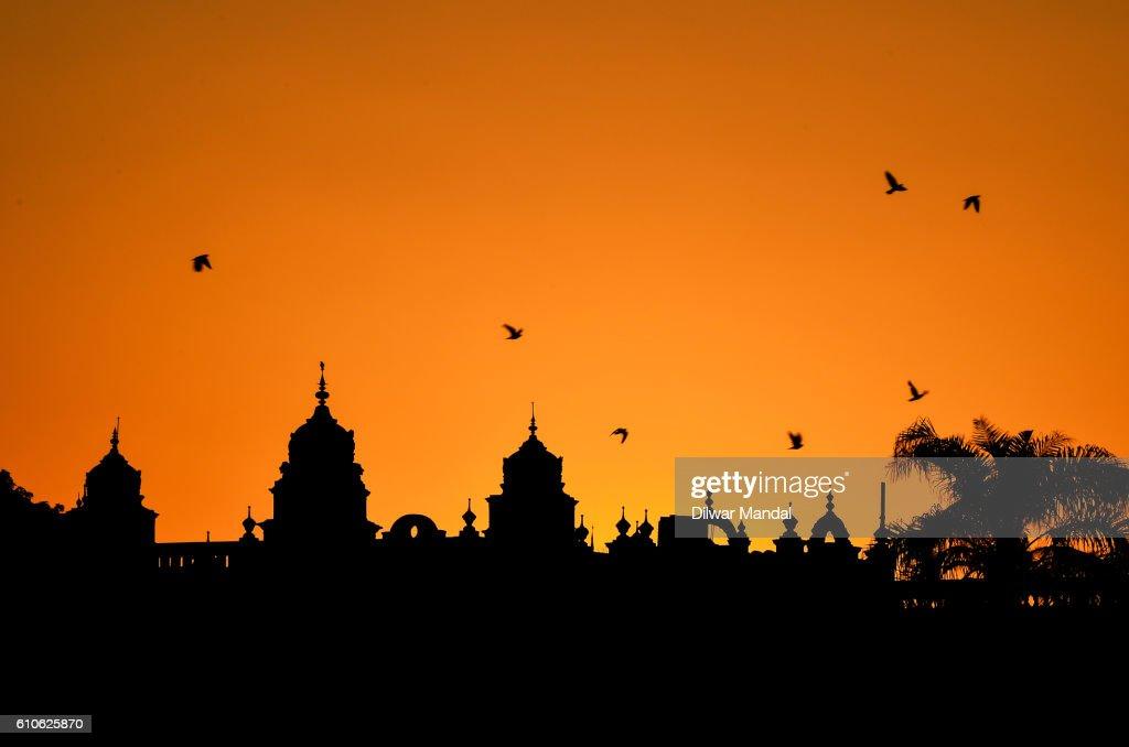 Golden Mysore : Stockfoto