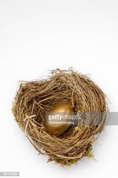 Golden Nest Egg For Retirement Pension White Background