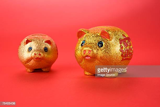 golden pigs - chinese language stock pictures, royalty-free photos & images