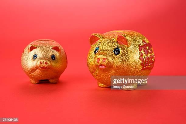 Golden pigs