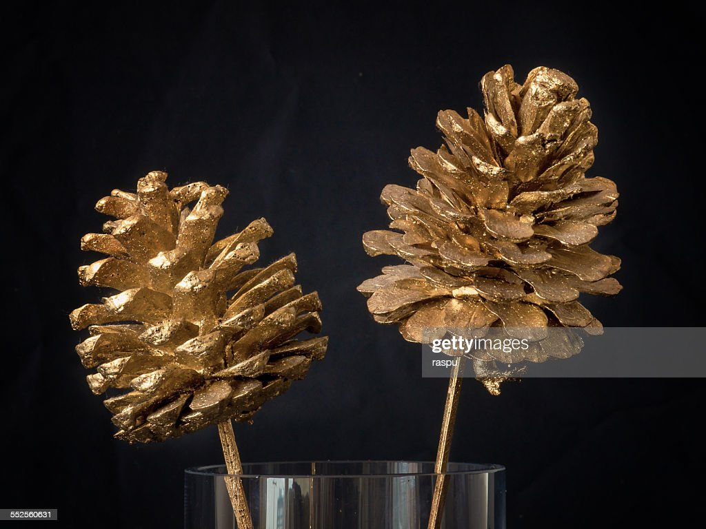 golden pine cones on a drinking glass still life stock photo getty