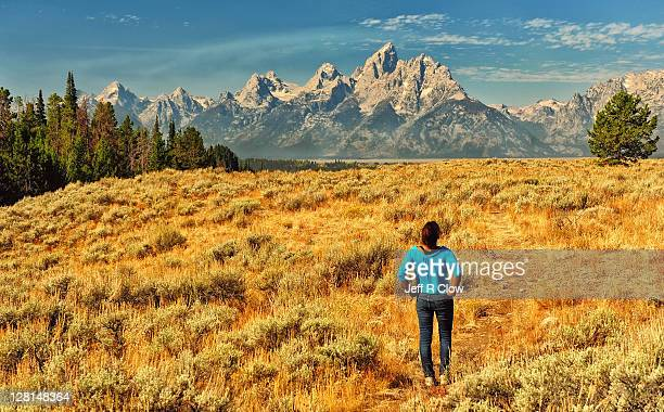 Golden plateau in Tetons