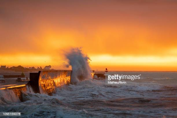 golden powerful storm with huge waves against the coast and the harbor - levee stock pictures, royalty-free photos & images