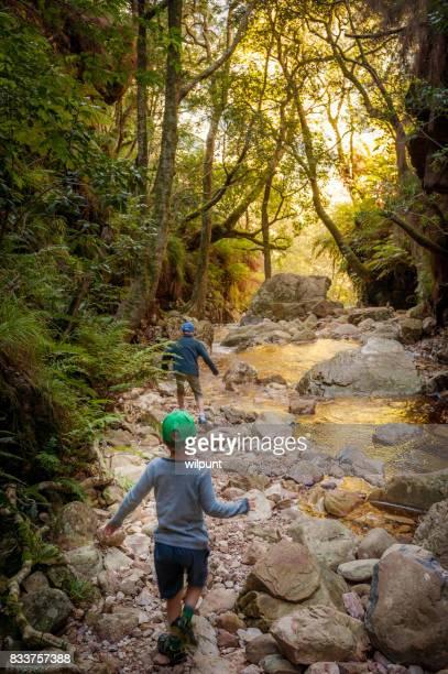 riflesso d'oro nel torrente di montagna con i ragazzi - nature reserve foto e immagini stock