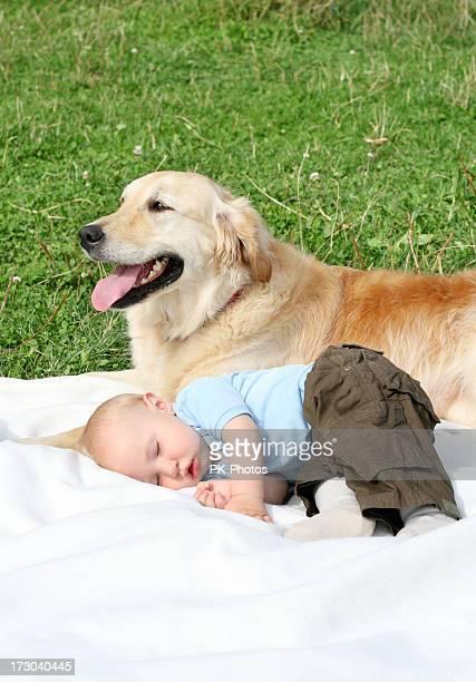 Golden Retriever und Babymode – Jungen