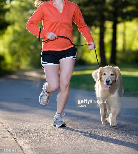 Golden Retriever and Woman Jogging on a Paved Path.