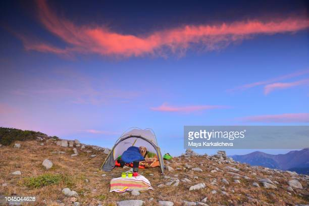 golden retriever dog resting in tent at sunrise with beautiful pink sky in the clouds - pirin mountains stock pictures, royalty-free photos & images